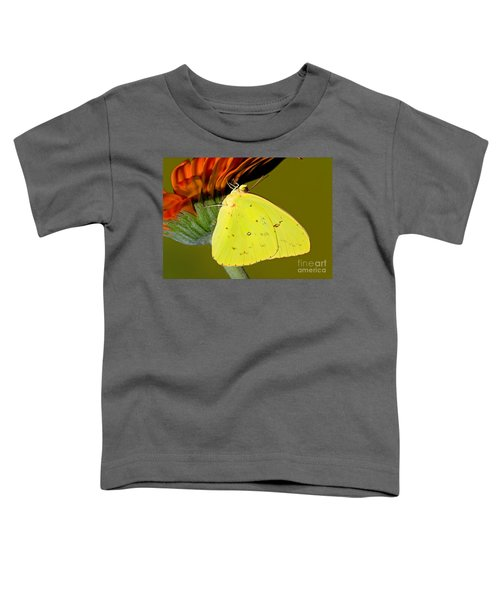 Orange Barred Sulfur Butterfly Toddler T-Shirt