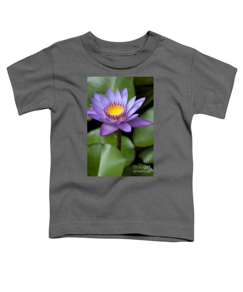 Radiance Toddler T-Shirt by Sharon Mau