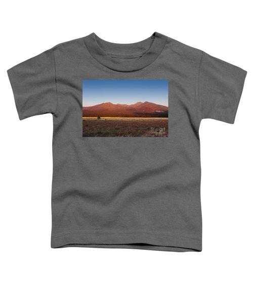 San Francisco Peaks Sunrise Toddler T-Shirt