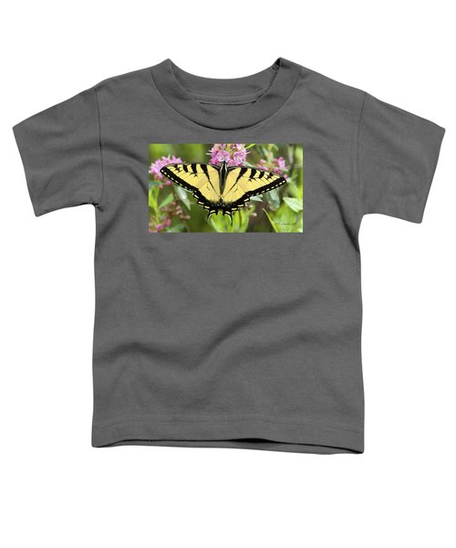 Tiger Swallowtail Butterfly On Milkweed Flowers Toddler T-Shirt