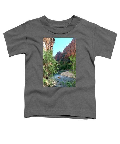 Virgin River Rapids Toddler T-Shirt