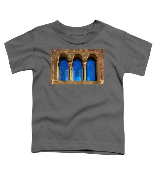 1001 Night Toddler T-Shirt