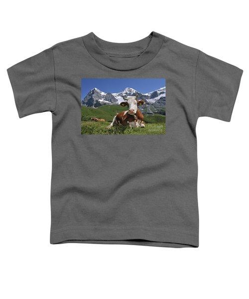 100205p181 Toddler T-Shirt