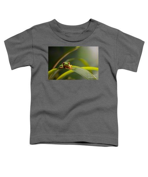 Red Eyed Tree Frog Toddler T-Shirt