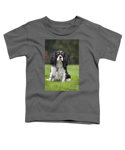 111216p255 Toddler T-Shirt