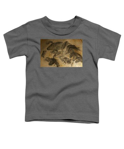 131018p051 Toddler T-Shirt