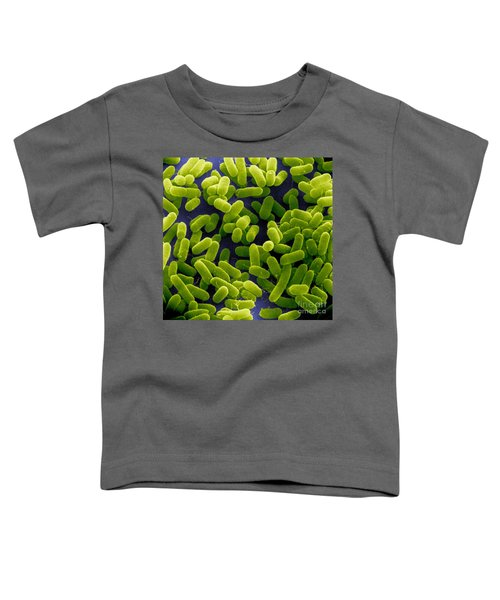 E. Coli Bacteria Sem Toddler T-Shirt