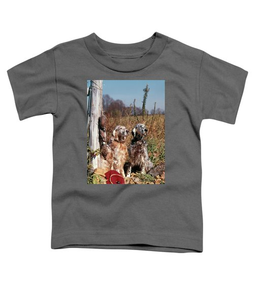 1960s Two English Setter Dogs Sitting Toddler T-Shirt