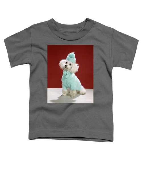 1970s White Poodle Wearing Blue Sweater Toddler T-Shirt