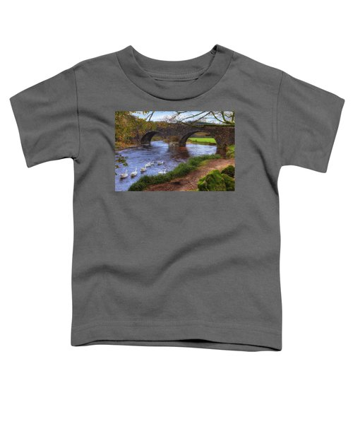 Dartmoor - Two Bridges Toddler T-Shirt