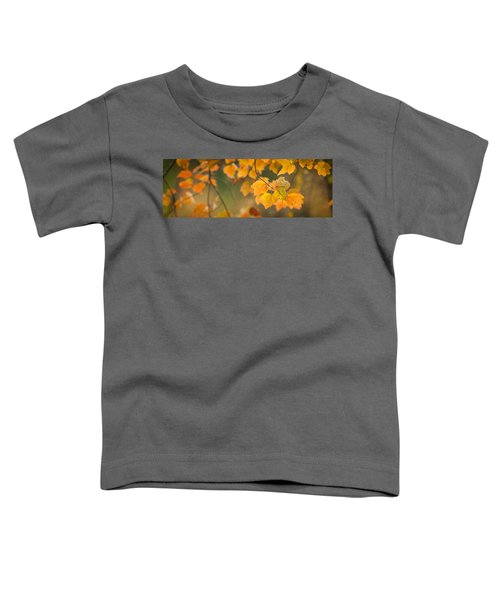 Golden Fall Leaves Toddler T-Shirt