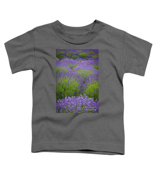 Lavender Study Toddler T-Shirt