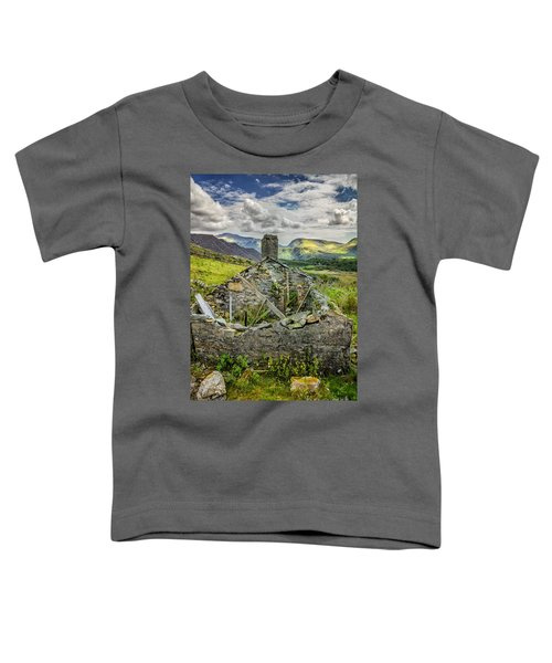 Mountain View Toddler T-Shirt