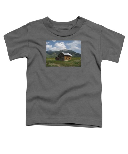 Paradise Valley Montana Toddler T-Shirt