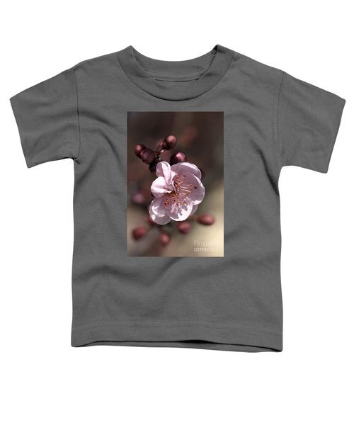Spring Blossom Toddler T-Shirt