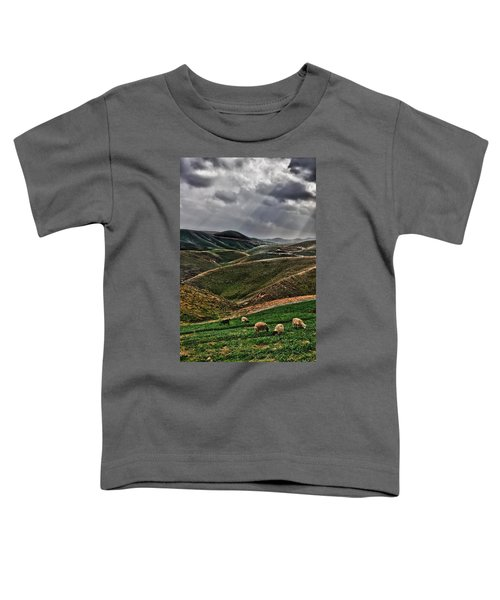 The Lord Is My Shepherd Judean Hills Israel Toddler T-Shirt