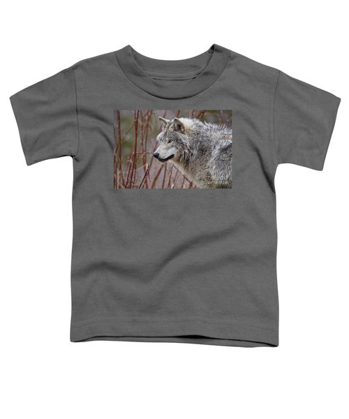 Timber Wolf Pictures Toddler T-Shirt