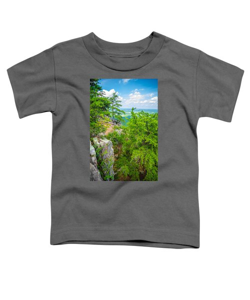 Beautiful Aerial Landscape Views From Crowders Mountain North Ca Toddler T-Shirt