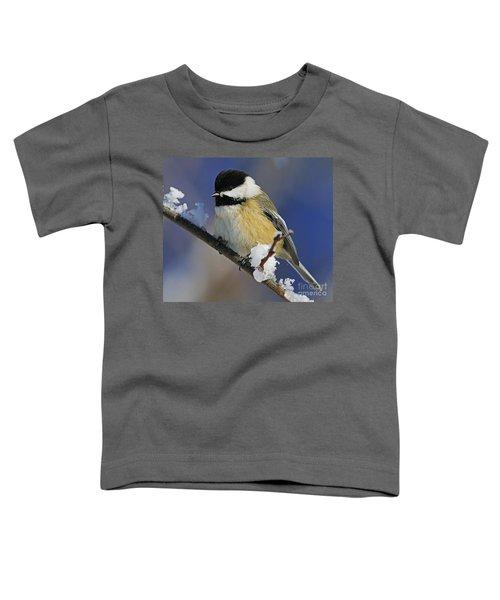 Winter Chickadee... Toddler T-Shirt