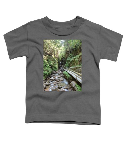 The Flume Gorge   Toddler T-Shirt
