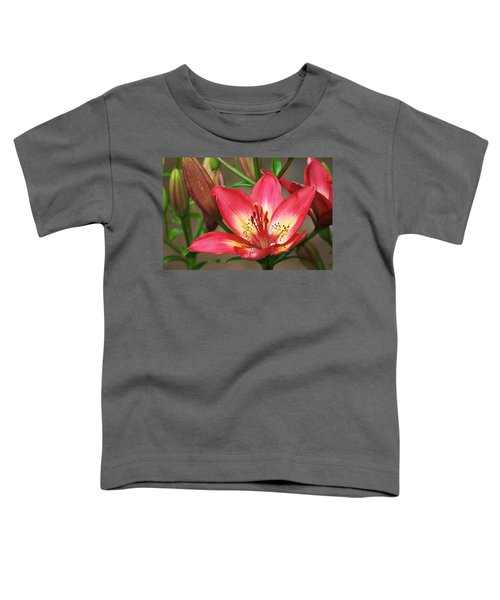 Arsenal Lily Toddler T-Shirt