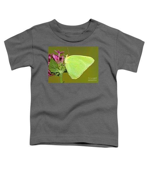 Cloudless Sulphur Butterfly Toddler T-Shirt