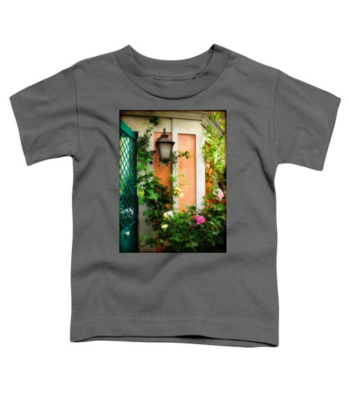 Country Charm Toddler T-Shirt