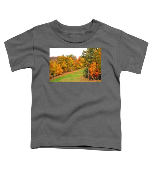 Fall Foliage In New England Toddler T-Shirt