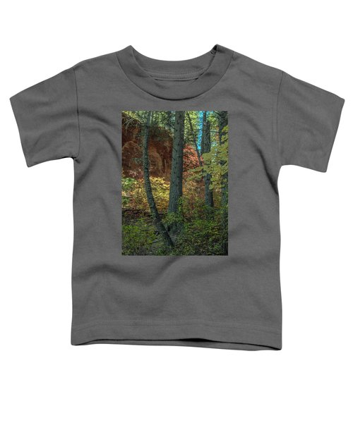 West Fork Fall Color Toddler T-Shirt