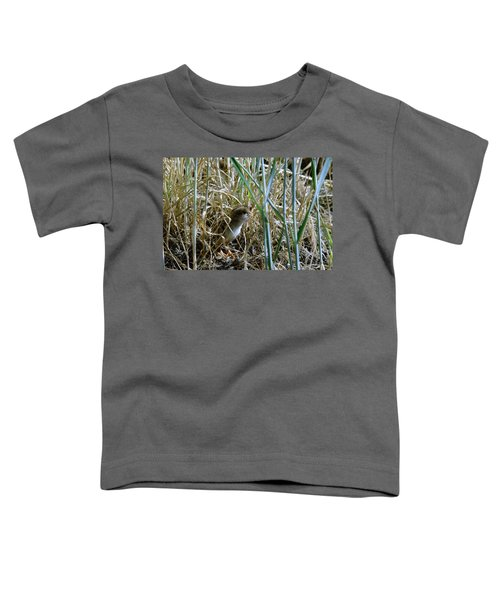 A Baby Quail Toddler T-Shirt