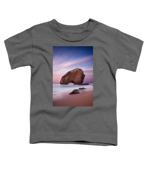 A Dream Toddler T-Shirt