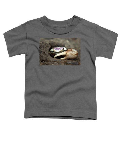 A Fiddler Crab Around Hilton Head Island Toddler T-Shirt