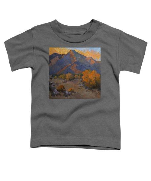 A Golden Sky Toddler T-Shirt