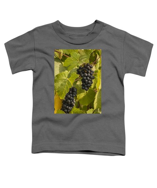 A Pair Of Clusters Toddler T-Shirt