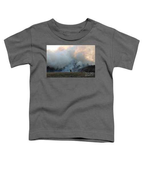 A Solitary Firefighter On The White Draw Fire Toddler T-Shirt