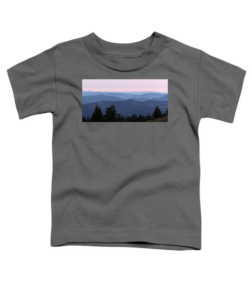 A View From Timberline Toddler T-Shirt