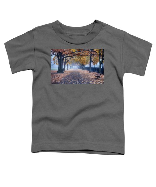 A Walk In Salem Fog Toddler T-Shirt