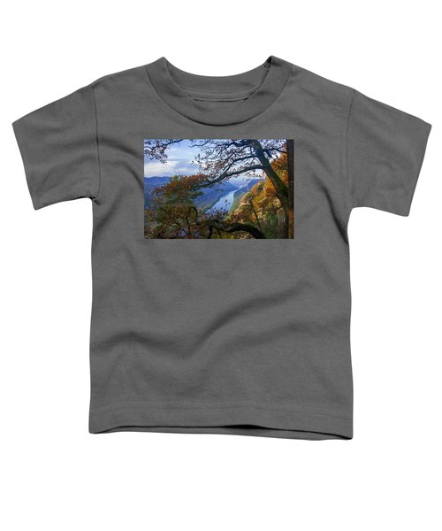 A Window To The Elbe In The Saxon Switzerland Toddler T-Shirt