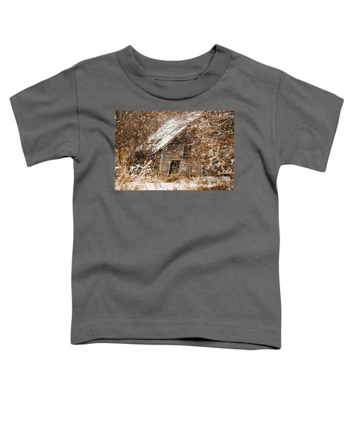 A Winter Shed Toddler T-Shirt