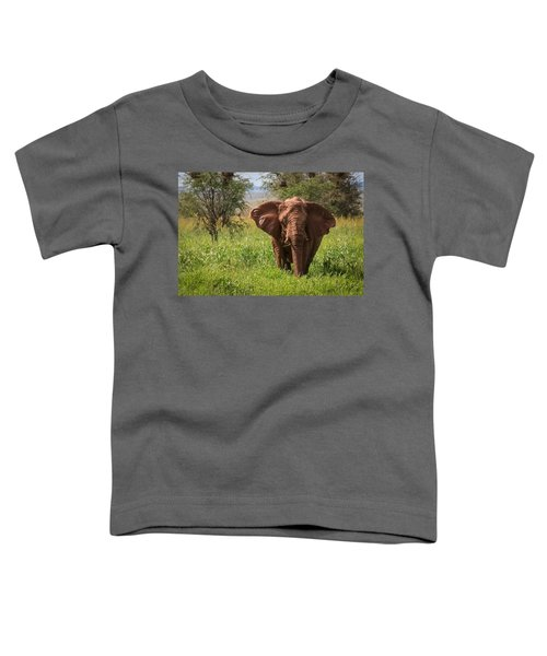 African Desert Elephant Toddler T-Shirt