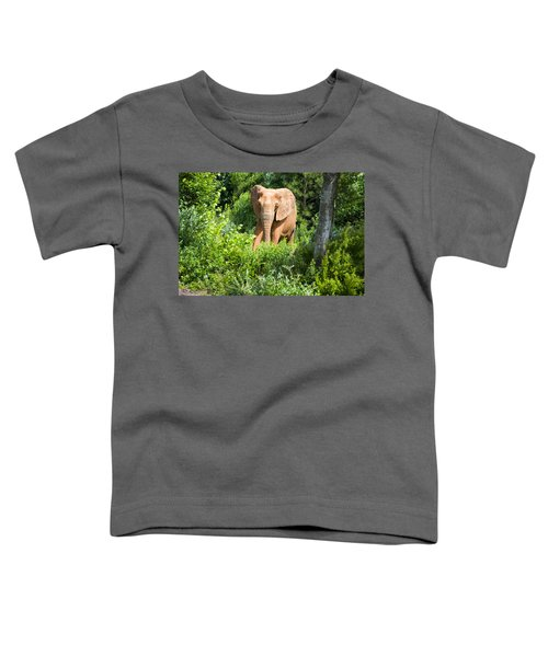 African Elephant Coming Through Trees Toddler T-Shirt