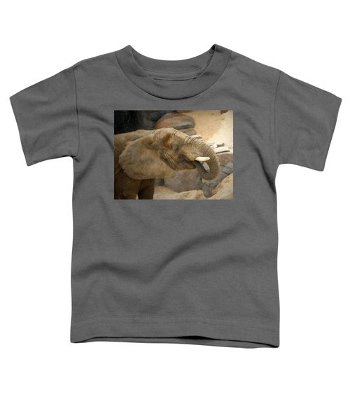 African Elephant Toddler T-Shirt