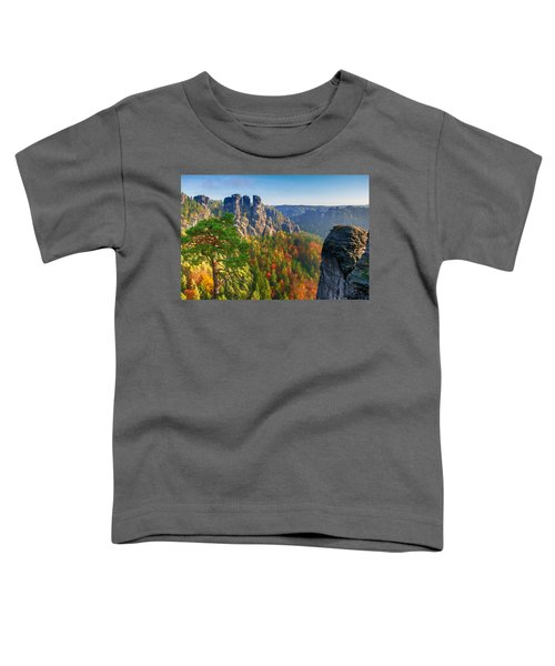 After The Sunrise On The Bastei Toddler T-Shirt