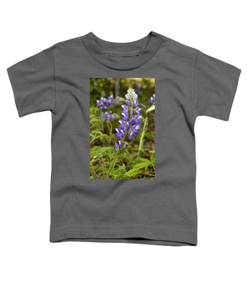 Alaskan Lupine In Denali Park Toddler T-Shirt