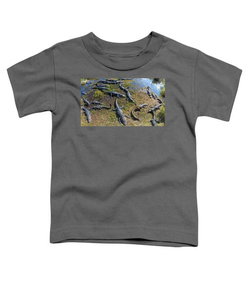Alligators Along The Anhinga Trail Toddler T-Shirt