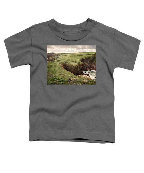 Along The Coast Path Toddler T-Shirt
