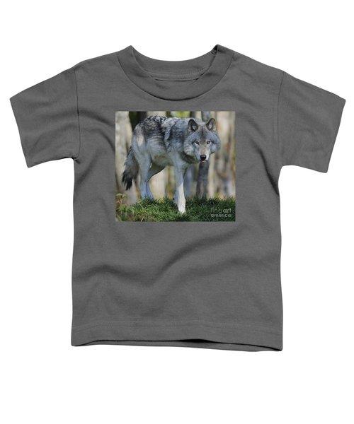 Alpha... Toddler T-Shirt