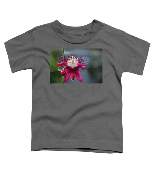 Amazing Passion Flower Toddler T-Shirt