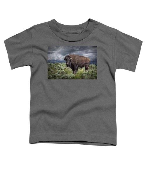 American Buffalo Or Bison In Yellowstone Toddler T-Shirt