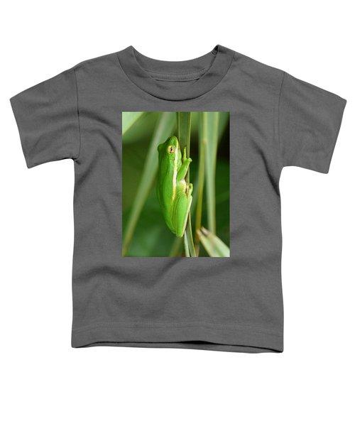 American Green Tree Frog Toddler T-Shirt
